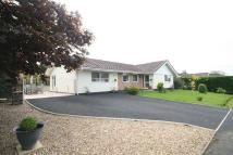 4 bed Detached Bungalow for sale in Llangefni, Anglesey
