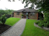 4 bed Detached Bungalow for sale in 29 Pheasant Road...