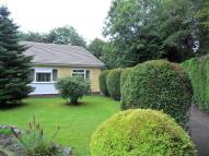 Semi-Detached Bungalow for sale in 50 Graig Newydd...