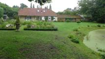 3 bedroom Country House in Loddon Hall Cottage...