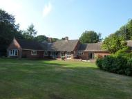 Detached Bungalow in Worlingham Court
