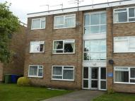 Flat to rent in Kingston Court, Beccles