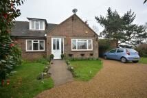3 bed house in Parkwood Road, Hastings...