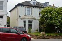 4 bed semi detached house in Springfield Road...