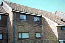 Apartment to rent in Saunders Way, Camber...