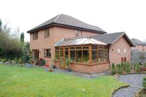 4 bedroom Detached home to rent in Knights Meadow, Battle...