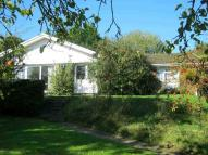 3 bed Bungalow in Flackley Ash, Peasmarsh...