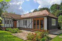 2 bed Bungalow to rent in West Undercliff, Rye...