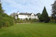 7 bed Detached house in Best Beech Hill...