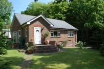 3 bedroom Detached house in London Road, Battle...