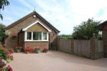 Bungalow for sale in Mill Lane, Westfield...