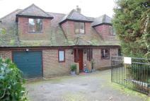 4 bedroom Detached property for sale in Langham Road...