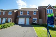 Detached property for sale in Coleman Road, Brymbo...