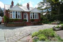 Hillock Lane Detached Bungalow for sale