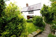 Cottage for sale in Dolydd Road, Cefn Mawr...