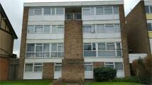 Flat to rent in Crossbrook Street...
