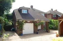 Northiam Road Detached house for sale