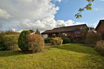 Detached Bungalow in Cherrywood, Harleston