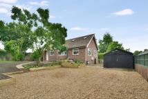 Detached house in School Lane, Harleston