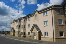 2 bed Flat to rent in 31j, Osprey Crescent...