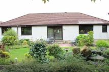 4 bed Detached Bungalow in 38, Bellhouse Road...