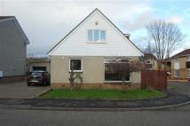 Detached property to rent in 71, Park Lea, Rosyth...