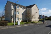 Flat to rent in 16, Peasehill Road...