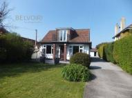 Detached Bungalow in Leckford, Crookes Lane...