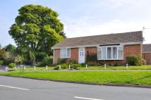 Bungalow to rent in EASINGWOLD - THE...
