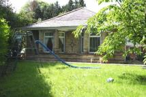 3 bedroom Detached Bungalow for sale in Maelgwyn Terrace, Gadlys...