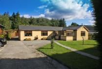Detached Bungalow for sale in Halt Road, Rhigos...
