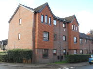 1 bedroom Ground Flat to rent in Gertrude Road, Norwich...