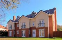 Flat to rent in Alexandra Court