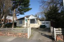 Bungalow to rent in Saughall rd Blacon