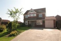 4 bedroom home in Penrhos Court Wepre