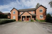 Flat to rent in Newry park East Chester