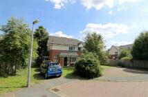2 bedroom Flat to rent in Sedgefield Road