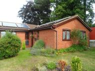 3 bed Detached Bungalow to rent in Daleside Avenue, Wrexham
