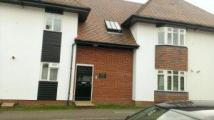Flat to rent in 4 Sollershott Lodge