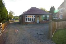 Detached Bungalow for sale in Barton Road, North Brink...