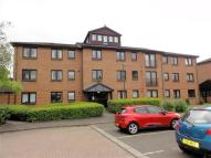Abbeymill Flat to rent