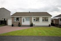 Detached Bungalow to rent in Munro Avenue, Stirling
