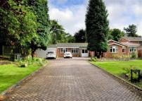 Detached Bungalow in Foxlands Drive, Penn...