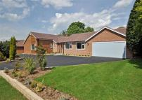 Detached Bungalow for sale in Sabrina Road, Wightwick...