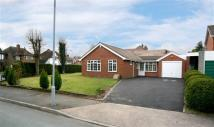 3 bedroom Detached Bungalow to rent in Saxonfields, Tettenhall...