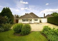 4 bedroom Detached Bungalow in Suckling Green Lane...