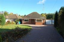 Detached Bungalow to rent in Penstone Lane...
