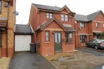 Link Detached House to rent in Clematis Drive...