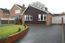 3 bed Detached Bungalow to rent in Clive Road, Pattingham...