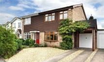 semi detached house to rent in Forge Valley Way...